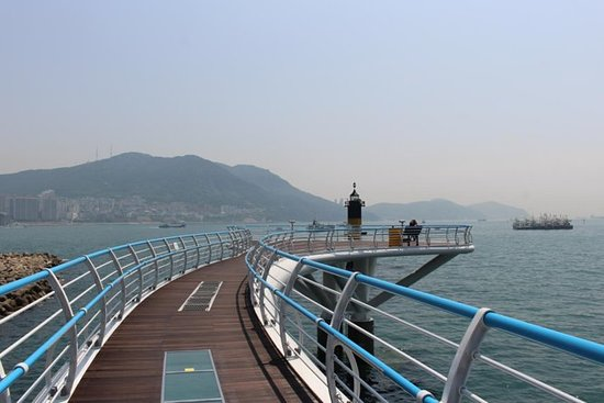 Tour di Busan con incluso il