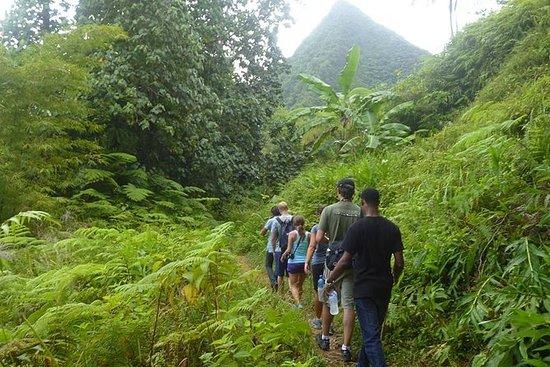 圣露西亚雨林徒步旅行