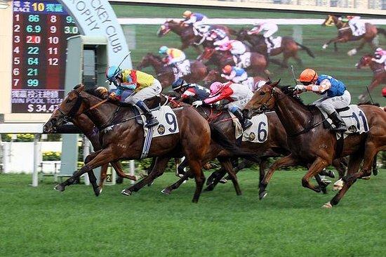 Kinesisk nyttår Hesteveddeløp i Hong...