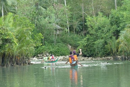 私人Aloguinsan一日游与宿雾的Bojo河游船