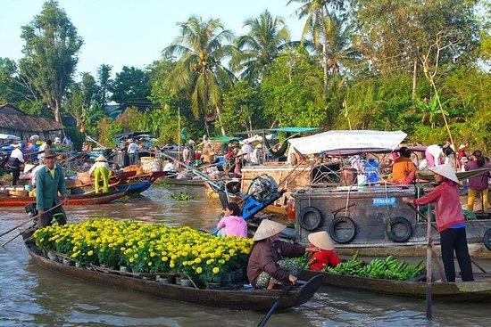 从胡志明市发现Cai Be Floating Market和Tan Phong...