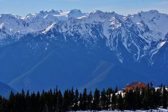 Olympic Mountains Seaplane Tour from...