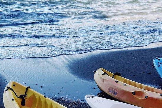 Brisbane Guided Kayaking Tour on...