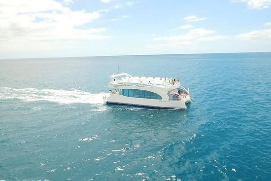Croisière de luxe en catamaran au...