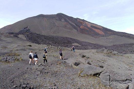 徒步前往帕卡亚火山 - 私人旅游
