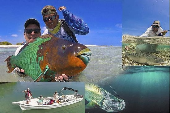 LOS ROQUES PRIVAT FISHING CHARTERS ...