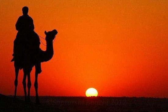 Camel Safari at Osian from Jodhpur