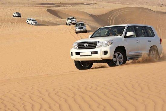 Le meilleur safari dans le désert de...