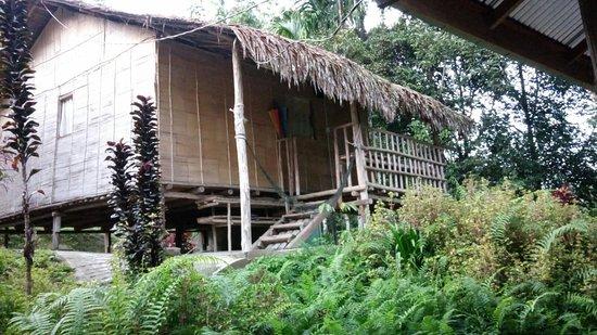 Entrance - Rain Forest Inn Photo