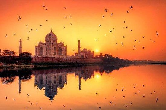 Privat Taj Mahal på Sunrise Day Tour...