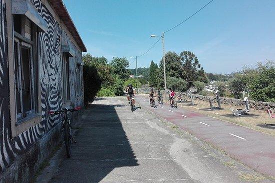 Volledige dag fietsen Ecopista do Dão ...