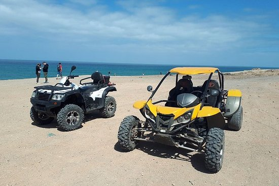 QUAD AND BUGGY SAFARI IN COSTA CALMA FROM JANDIA OR ESQUINSO