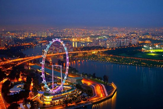 Singapore Flyer and Gardens by the...