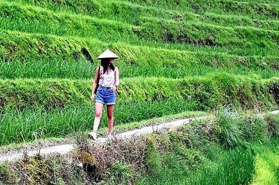 2 Days Hiking Private Tour at Longji...