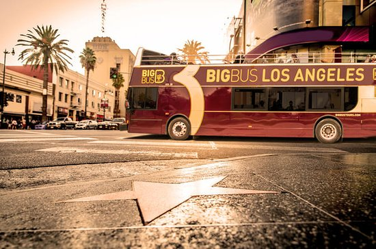 THE 5 BEST Los Angeles Hop Hop f Tours with s TripAdvisor