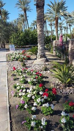 Shields Date Garden: Start Of The Walk