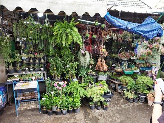 Chatuchak Weekend Market: c