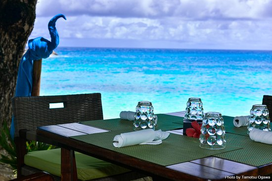 Praslin Island, Seychelles: セイシェルのプララン島は、世界一美しいとも謳われるビーチと、豊かな自然を誇る穴場スポット。極上の休日を #マリンダイビング #marinediving #lascuba #ラスクーバ #diving #scubadiving #underwaterphoto #ダイビング #スクーバダイビング #水中写真