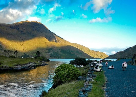 Connemara Adventure Tours