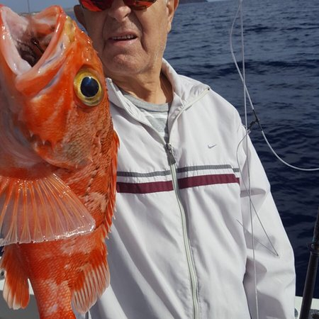 Las Galletas, Spanyol: White Tuna Tenerife