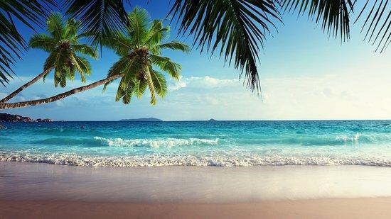 Punta Cana Tour Service