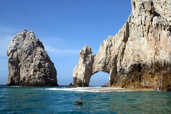 Los Cabos Combo Tour with Free Photos: Boat Ride, City Sightseeing...