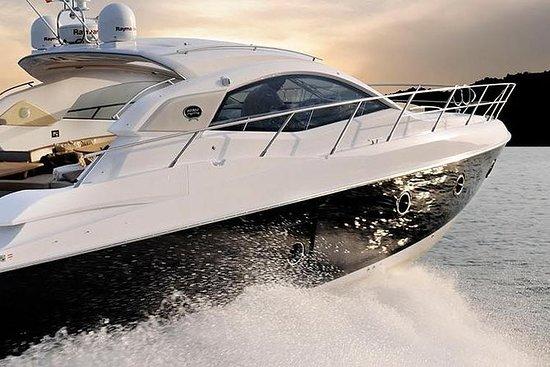 Excursion en bateau d'une...