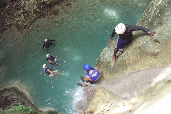 27 Waterfalls of Damajagua Tour from...