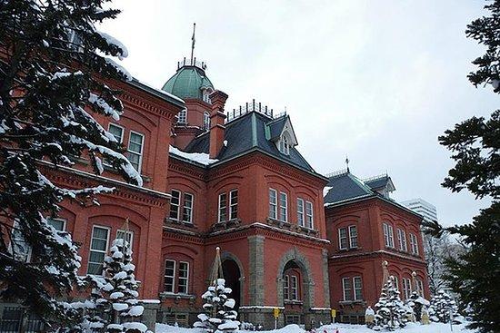 Private Sapporo Custom One-Day Tour...