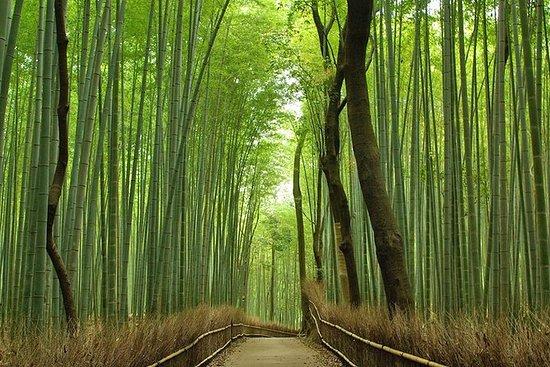 Excursão privada de meio dia em Kyoto...