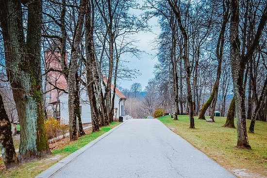 Private Tour of Sigulda and Turaida...