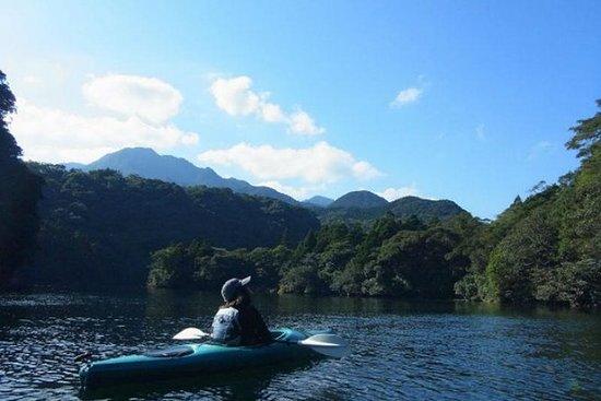 Caiaque no rio Anbo em Yakushima