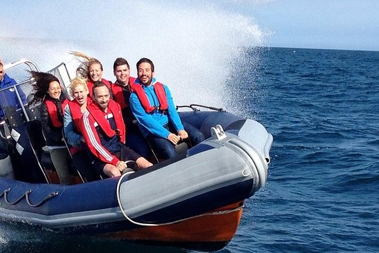 Private Group Powerboat Ride i...