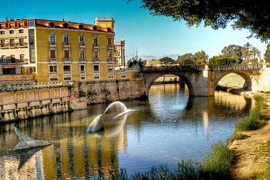 Visita a pie de Murcia