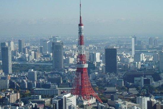 东京全日私人定制特许出租车之旅
