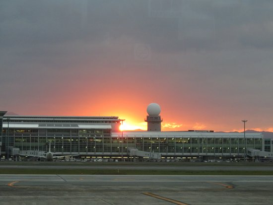 Peach Aviation: 福岡で離陸開始