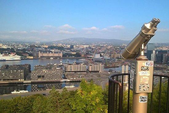 Private Oslo Tour: stadsgezichten ...
