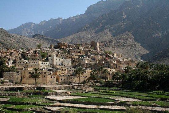 私人旅游:瓦迪斯和山脉 - 来自马斯喀特的Wadi Bani Awf