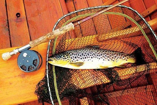 布朗鳟鱼飞行钓鱼天游览在港湾科里布县戈尔韦