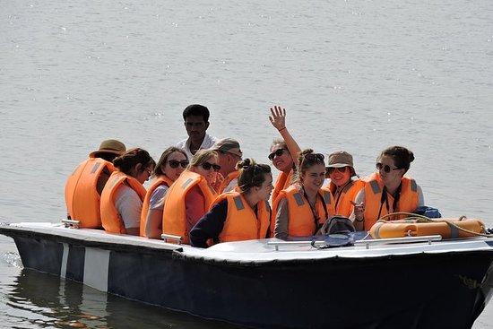 Palighat Chambal Safari van Sawai ...