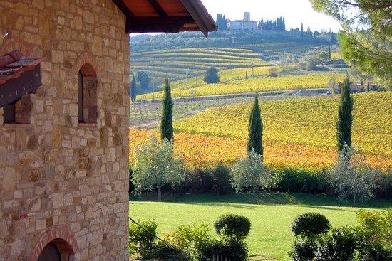 Dagstur fra Firenze: Eksklusiv Chianti...