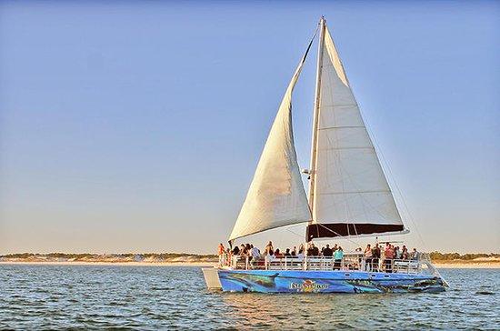 Sunset & Dolphin Catamaran Cruise i...