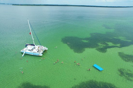 Shell Island Snorkel & Dolphin...