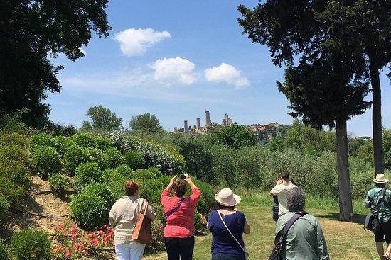 Volterra en San Gimignano vanuit Lucca