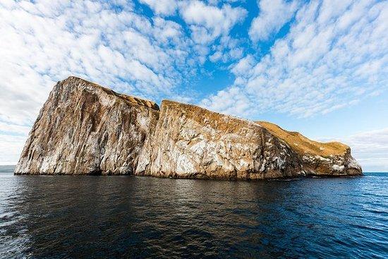 ガラパゴスのサンクリストバル島からのキッカーロック日帰り旅行