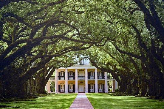 Tour pela Plantação de Nova Orleans
