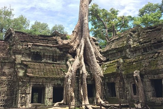 Private Angkor Wat Tour Guide To...