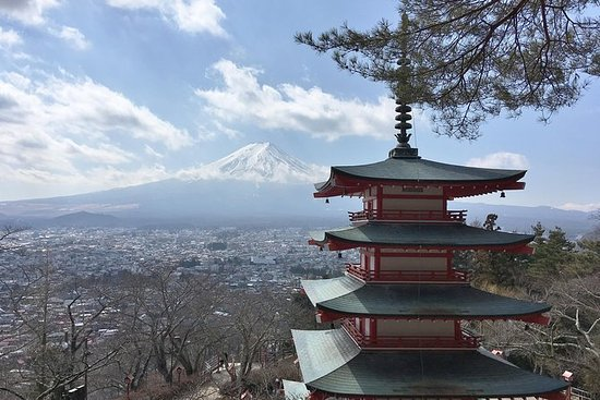 Private Full Day Mount Fuji Tour from...