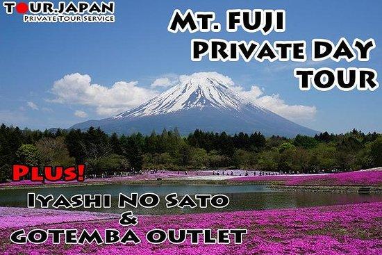 GANZER TAG MT FUJI TOUR MIT GOTEMBA...