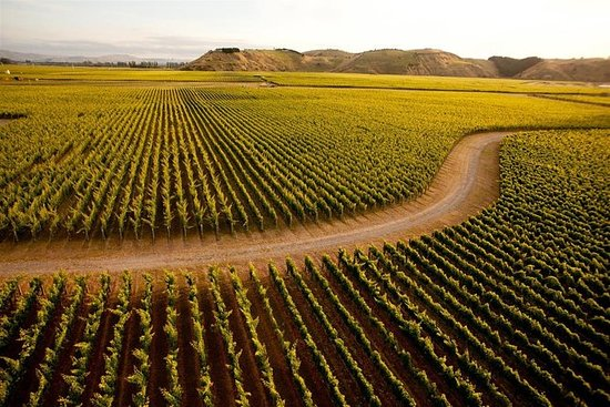 Napier City & Hawkes Bay Wine Country ...